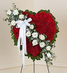 Red Heart with White Roses from Wyoming Florist in Cincinnati, OH