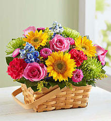 Bright and Beautiful Basket from Wyoming Florist in Cincinnati, OH