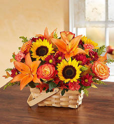 Autumn Basket from Wyoming Florist in Cincinnati, OH