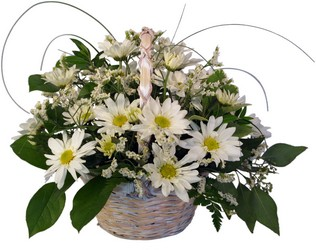 Daisy Basket from Wyoming Florist in Cincinnati, OH