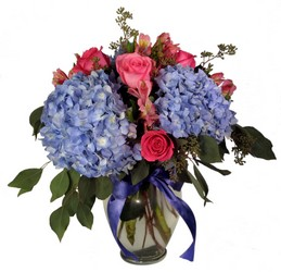 Hydrangea and Roses from Wyoming Florist in Cincinnati, OH